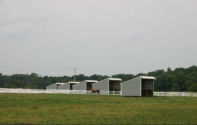 New Pasture Shelters